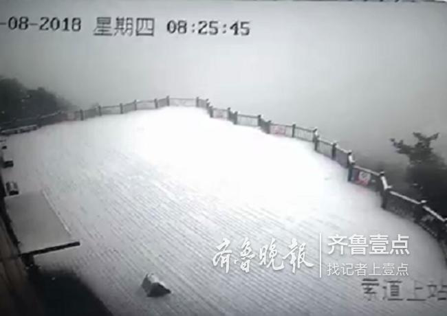 """""""下雪喽!"""" 11月8日临沂迎来今冬首场降雪"""
