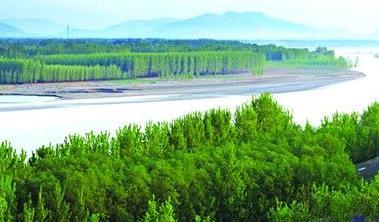 聊城大力改善人居环境 建成森林公园11处湿地公园16处