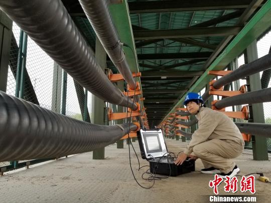 """一根电缆线""""藏""""着数十个专利 基层供电团队贡献创新智慧"""