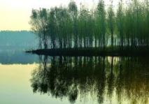 淄博通过国家节水型城市现场考核验收