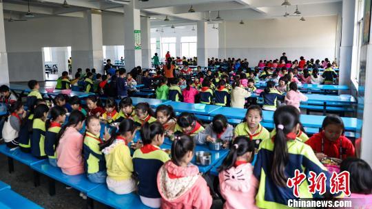 广西柳州免费午餐惠及近千所学校 每分钱都吃到孩子嘴里