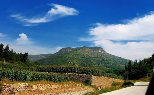 淄博出台方案 整治自然保护区生态问题