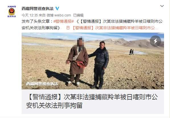 男子非法猎捕藏羚羊,家中搜出疑似皮和肉 已被刑拘
