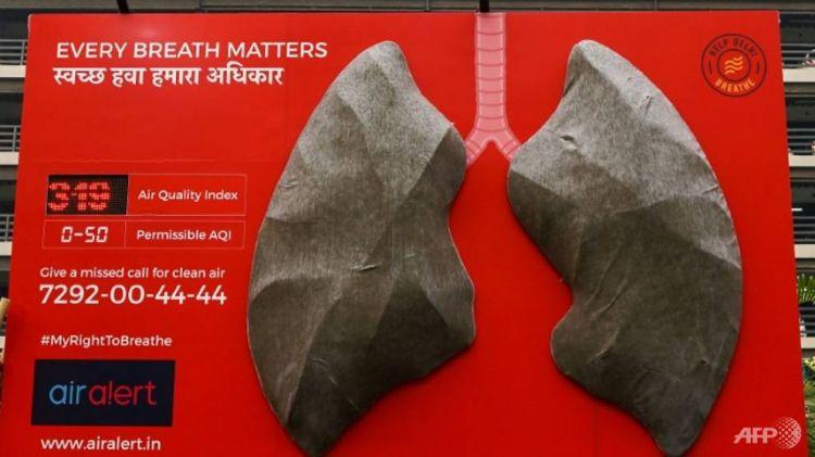 污染程度令人担忧 德里展出人造肺不到十天就变黑