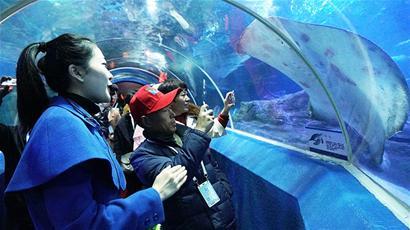 青岛旅游惠民月邀村民看美景 莱西千名村民游海底世界