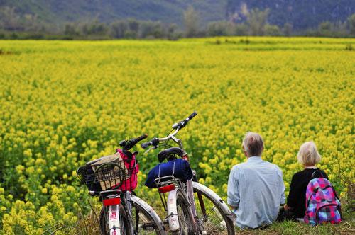102个!山东省休闲农业和乡村旅游示范创建名单公示
