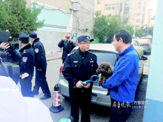 济南犬只数量达到10万,不拴绳、扰民、犬便问题突出