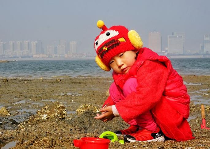 组图:冬日唐岛湾赶海忙 市民挖海蛎子收获颇丰