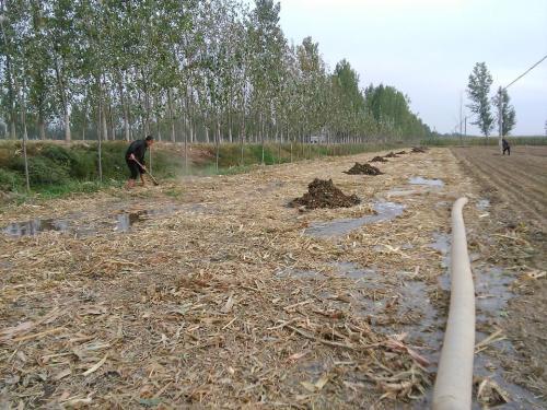 做好水文章 聊城2018年度小农水项目建设任务基本完成