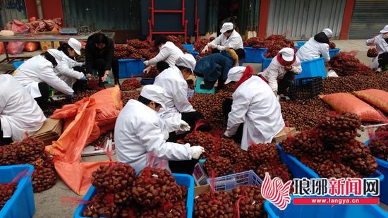 临沂:批发市场+电商模式 农副产品50天网售3.6亿