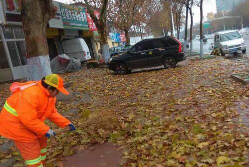 降温降雨落叶飘 临沂环卫工人保障道路干净整洁