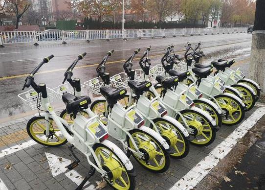 新投放未备案 淄博60辆电动单车被暂扣