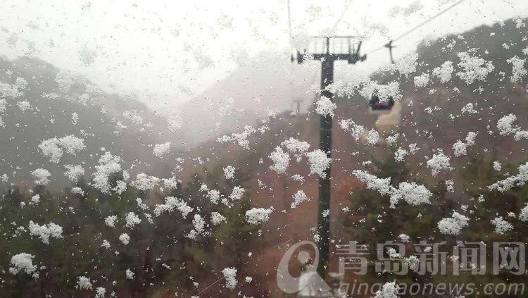 高清:崂山之巅喜迎今冬初雪 仙山圣境悄然披上银装