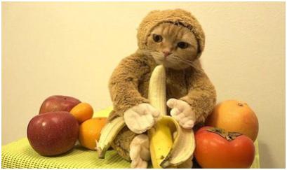 香蕉.png