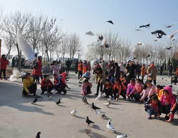 北海打造京津冀经济圈最佳财产聚集地