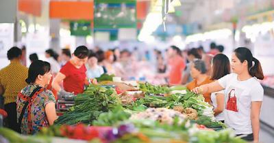 中国每年蔬菜集约育苗2000亿株