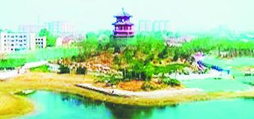 淄博高新区生态宜居有颜值 打造环境新高地