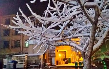 今冬首个暴雪预警!枣庄临沂等地局部暴雪