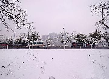 枣庄,一场雪过后,成了这样...