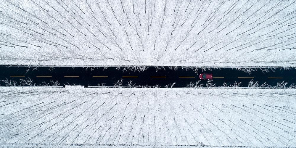 俯瞰雾凇冰凌奇观!航拍雪后台儿庄湿地如水墨画卷