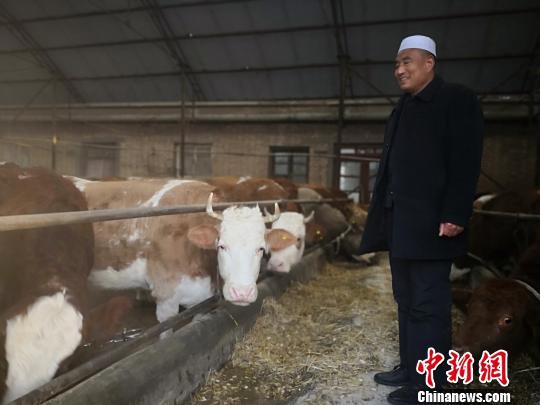 """甘肃农民养牛也带""""文艺范"""":笔墨书写人生""""溢""""幸福"""