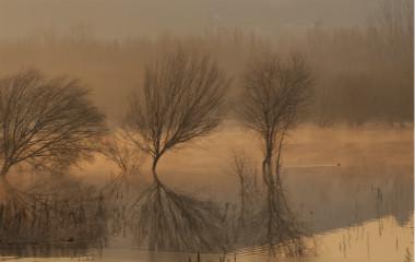 组图:落日长河!枣庄黑峪库区云雾缭绕如仙境