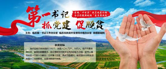 沂南铜井杜山村第一书记:推动全村美丽乡村建设