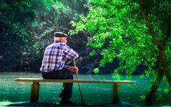 全球长寿地区的老人原来这么吃饭