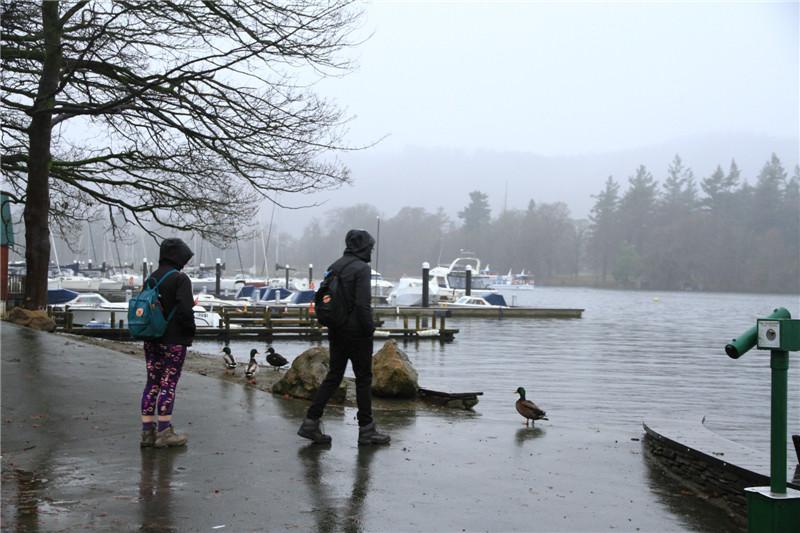 41、蒙蒙细雨中的温德米尔湖