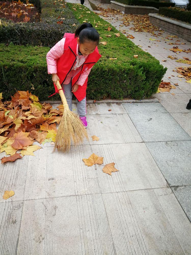 我的志愿故事(26) 我是小小保洁员