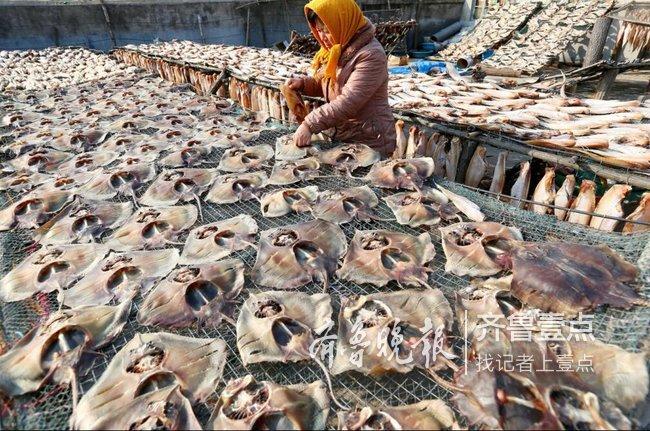 又到晒鱼季 即墨这个村30多种甜晒鱼堆满屋顶(图)
