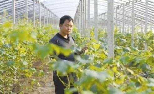 """聊城:29名新型职业农民""""持证""""闯市场"""