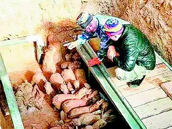"""山东一汉墓挖出汉代人马俑,堪称""""出行仪仗队""""!"""