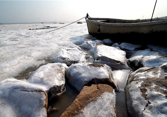冷!胶州湾西岸多片区域出现海冰 最厚可达5厘米