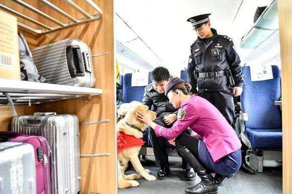 盲人夫妇携导盲犬乘高铁 列车长乘警关爱服务赢点赞
