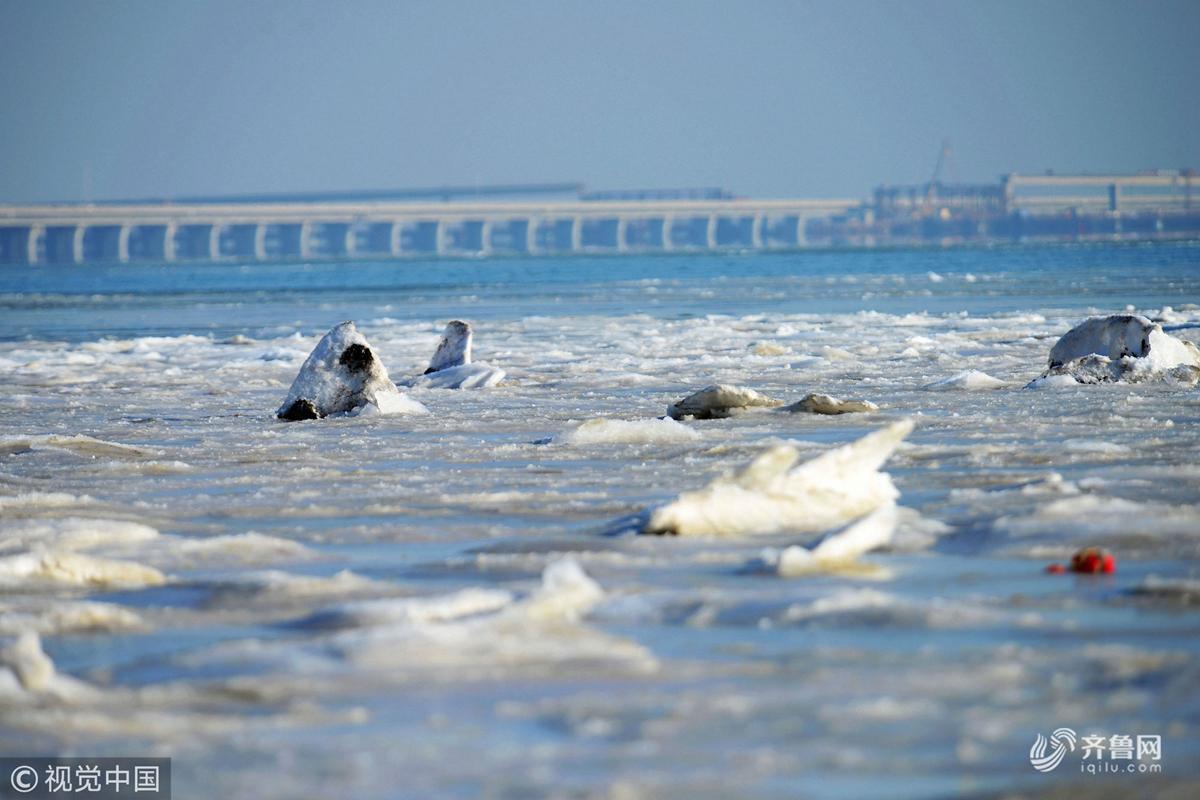 青岛:寒潮来袭 胶州湾海岸集结千米海冰