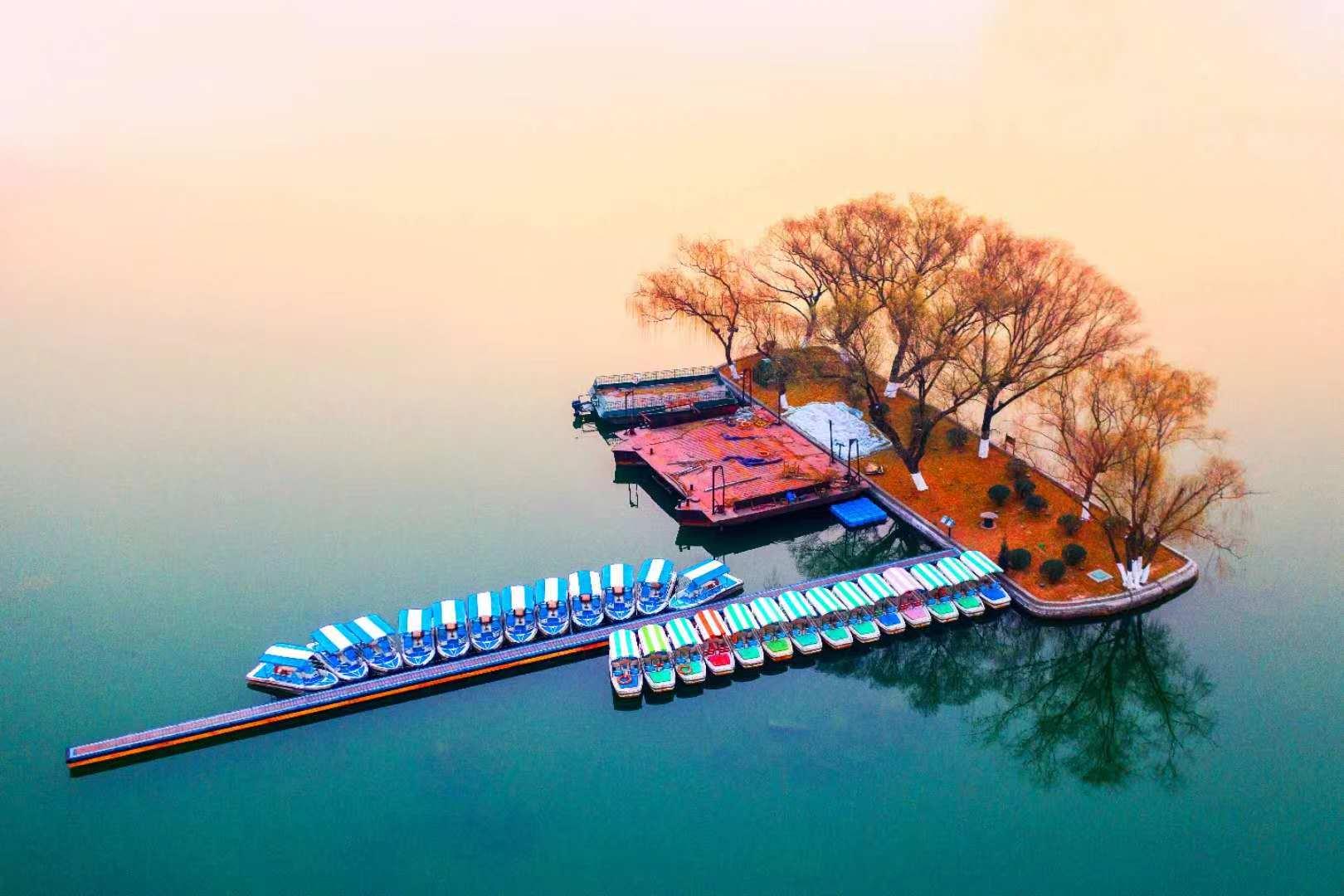 独家组图丨大明湖畔,迎来了新的一年的黎明和阳光