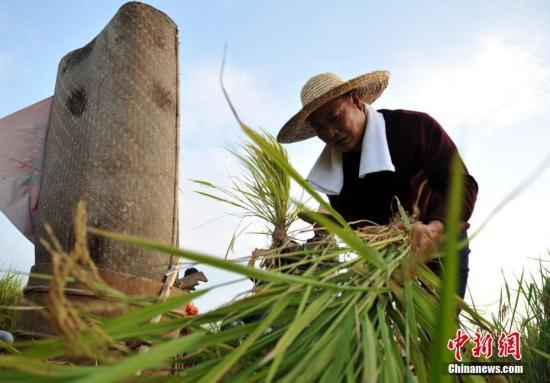 15部门:支持符合条件的农产品精深加工企业申请上市