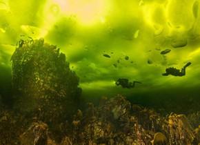 潜水员探索冰下海底世界 色彩奇幻如外星球