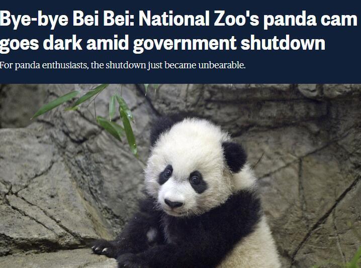 美政府关门连累动物园:熊猫直播被掐 粉丝们急了