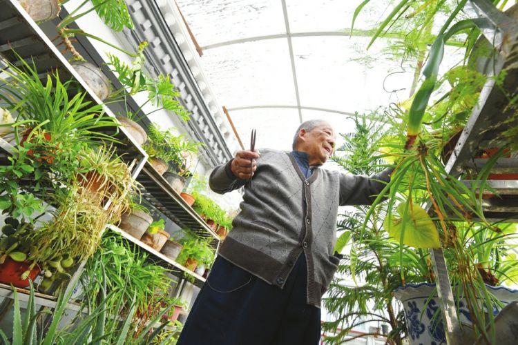 济南一社区为居民寄存花草,一对老夫妻义务照料了7年
