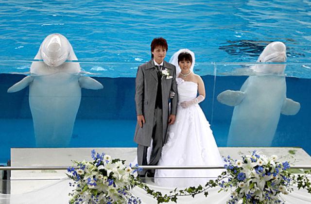 退休后就离婚?日本这么想的女性竟然比男性还多
