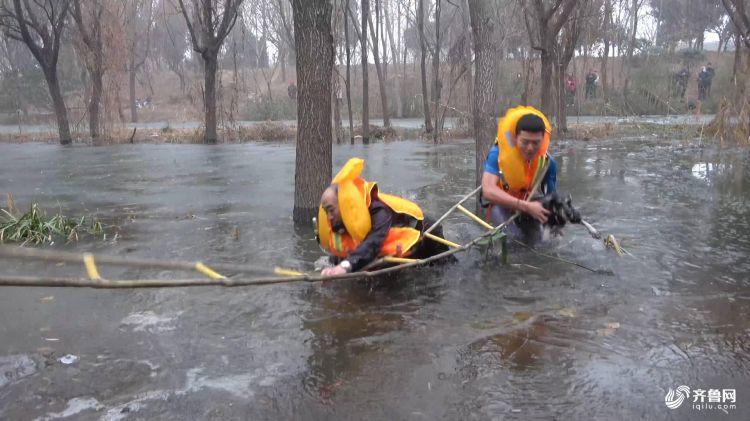 看着都冷!90后消防员赤脚破冰,只为救老人和狗