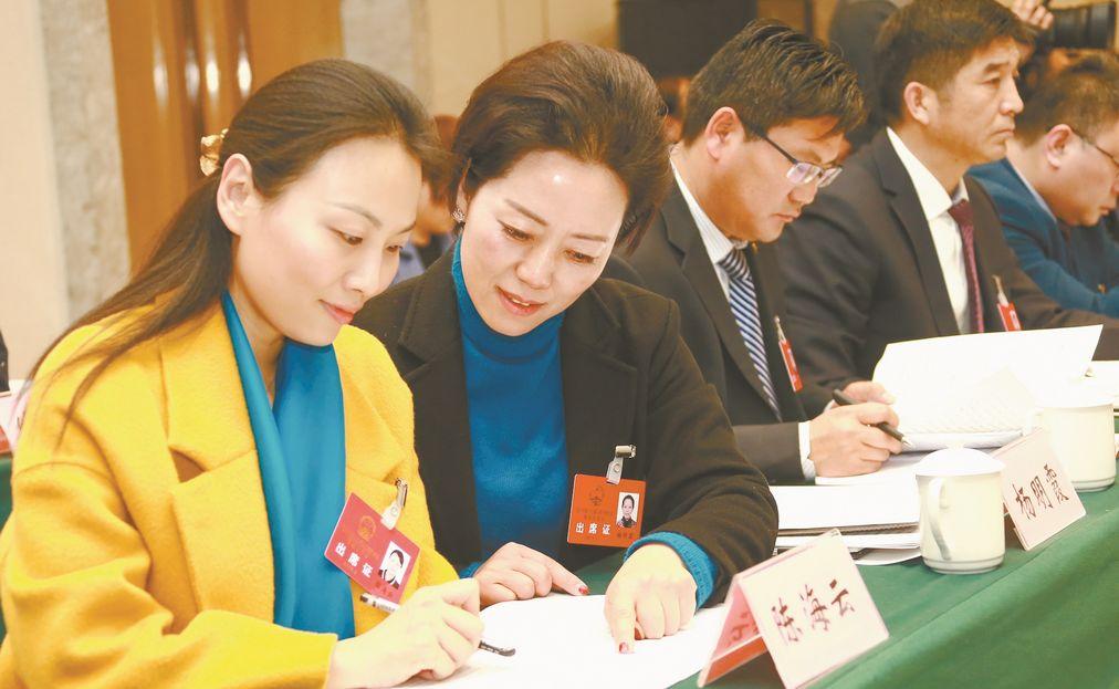 临沂人大代表讨论审议《政府工作报告》