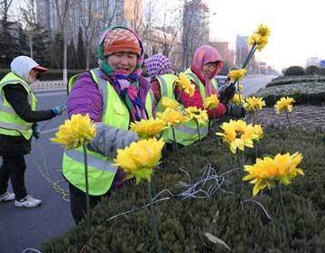 滨州市区春节亮化黄河八路等路段已经完工