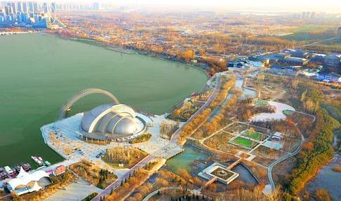 聊城:艳阳天下冬景美