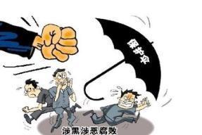 """2018年聊城处结""""保护伞""""问题42起 1名市管干部自首"""
