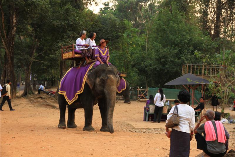 86、年事已高也要骑一骑大象