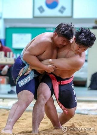 韩媒:韩朝下周讨论传统摔跤交流合作事宜
