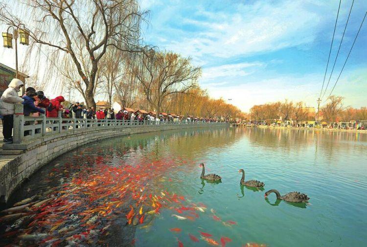 济南:没了鞭炮声来了春节蓝